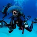 Cancun, Cozumel y Playa del Carmen